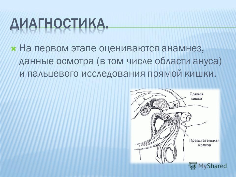 На первом этапе оцениваются анамнез, данные осмотра (в том числе области ануса) и пальцевого исследования прямой кишки.