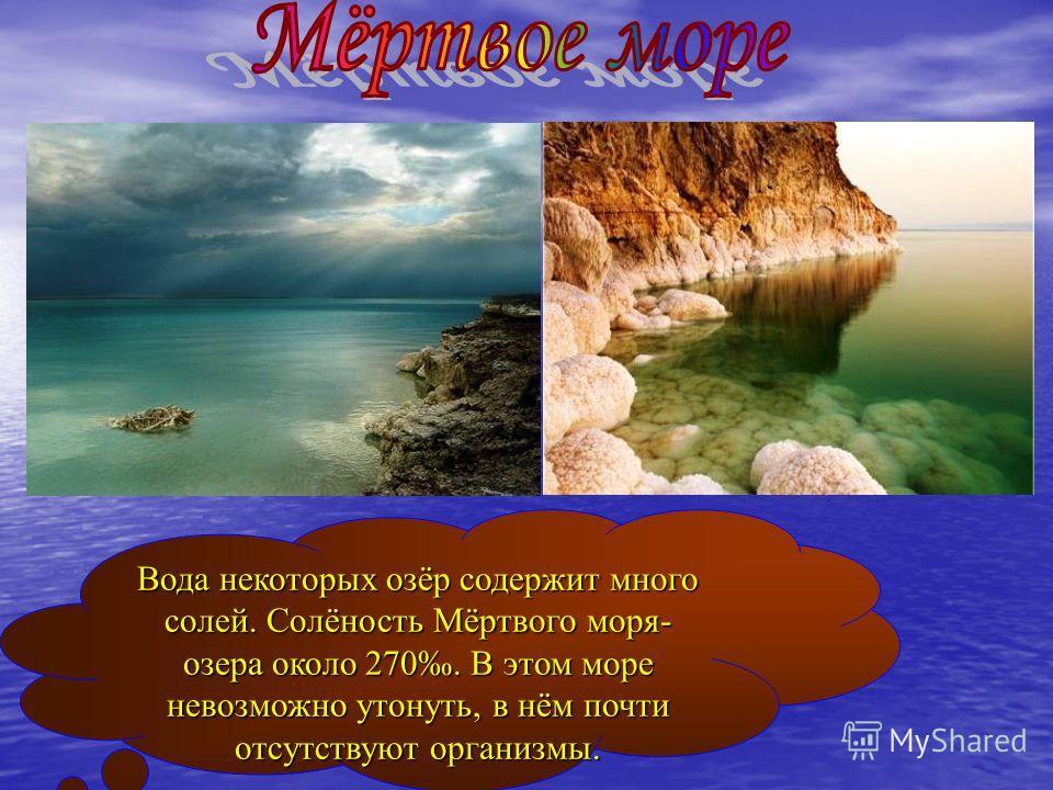 Вода некоторых озёр содержит много солей. Солёность Мёртвого моря- озера около 270. В этом море невозможно утонуть, в нём почти отсутствуют организмы.