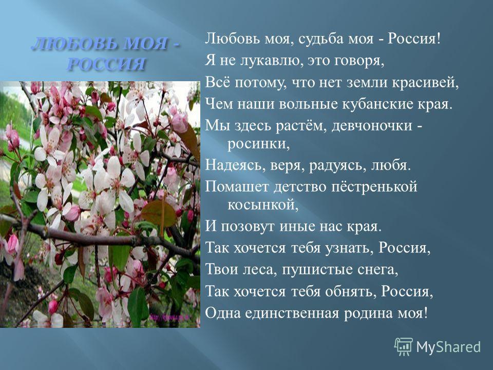 ЛЮБОВЬ МОЯ - РОССИЯ Любовь моя, судьба моя - Россия ! Я не лукавлю, это говоря, Всё потому, что нет земли красивей, Чем наши вольные кубанские края. Мы здесь растём, девчоночки - росинки, Надеясь, веря, радуясь, любя. Помашет детство пёстренькой косы