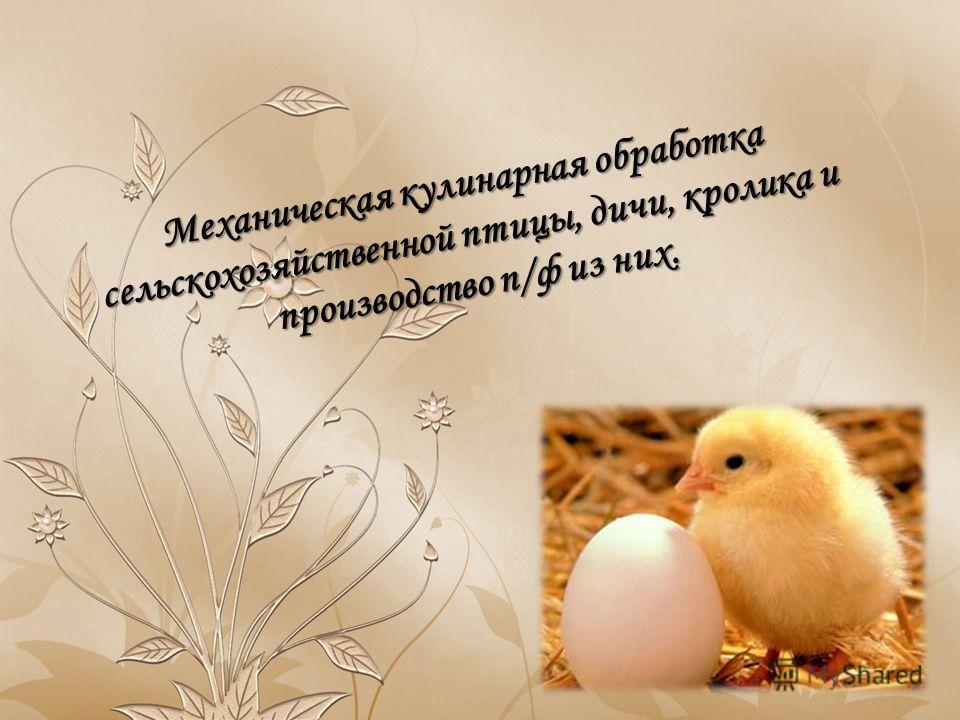 Механическая кулинарная обработка сельскохозяйственной птицы, дичи, кролика и производство п/ф из них.