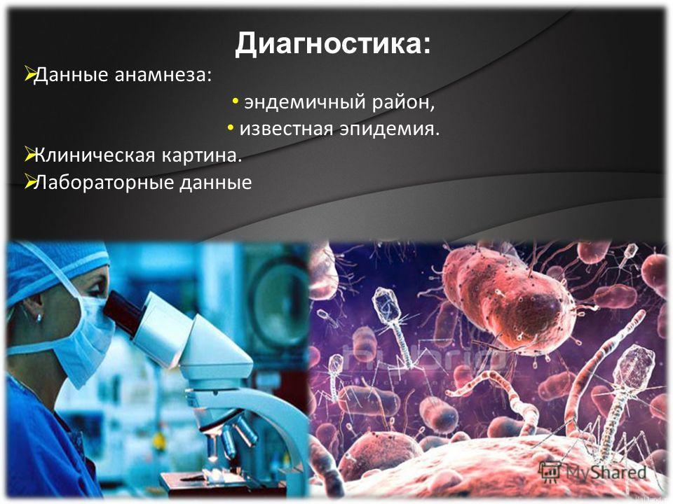 Диагностика: Данные анамнеза: эндемичный район, известная эпидемия. Клиническая картина. Лабораторные данные
