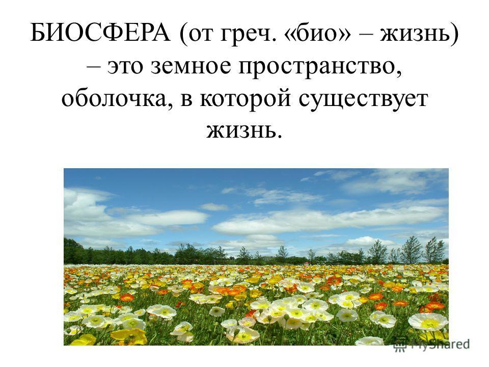 БИОСФЕРА (от греч. «био» – жизнь) – это земное пространство, оболочка, в которой существует жизнь.