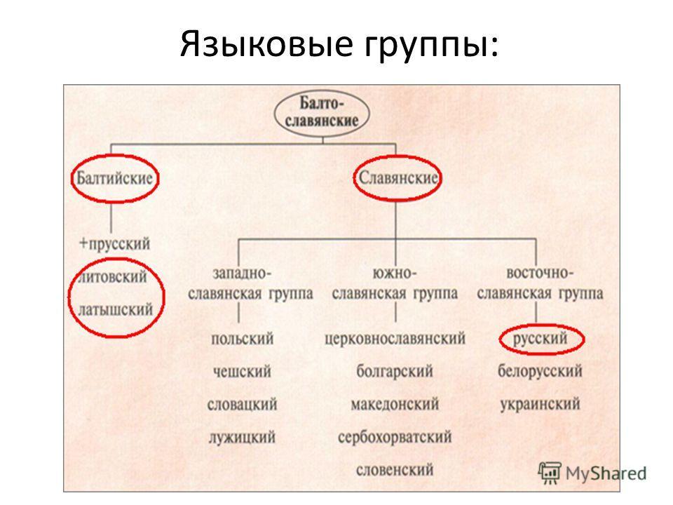 Языковые группы: