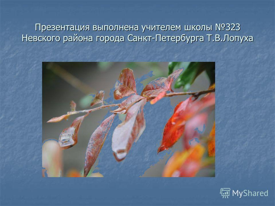 Презентация выполнена учителем школы 323 Невского района города Санкт-Петербурга Т.В.Лопуха