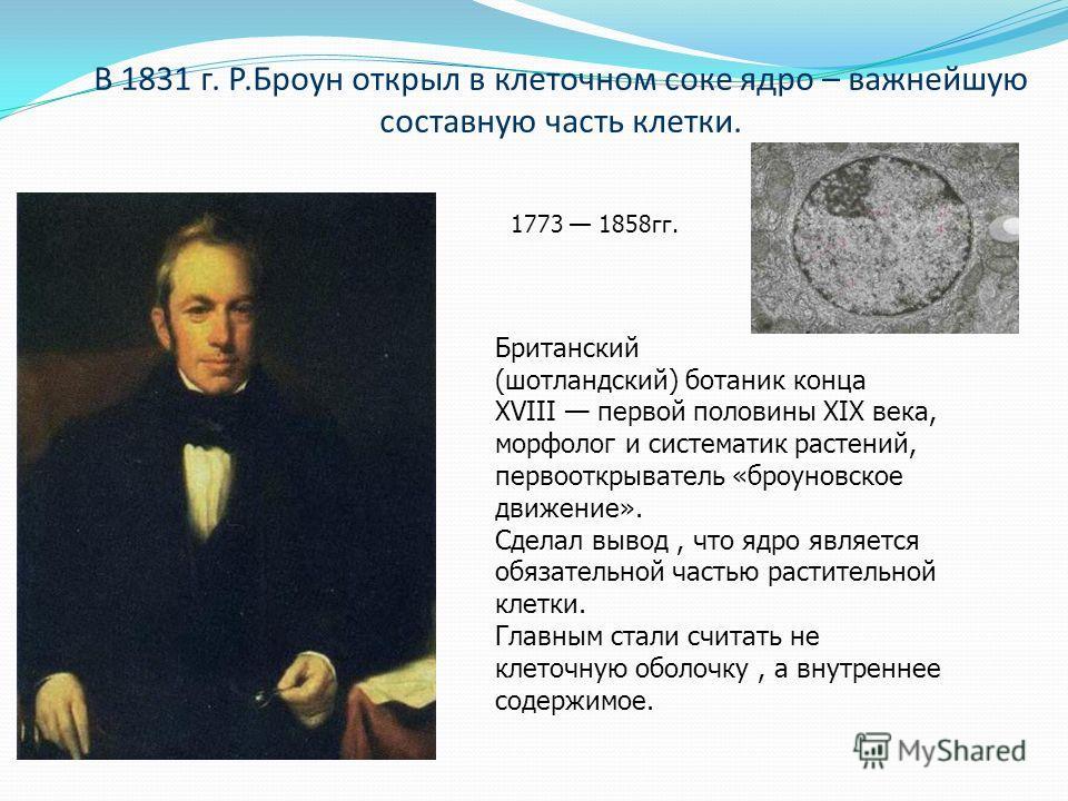 В 1831 г. Р.Броун открыл в клеточном соке ядро – важнейшую составную часть клетки. Британский (шотландский) ботаник конца XVIII первой половины XIX века, морфолог и систематик растений, первооткрыватель «броуновское движение». Сделал вывод, что ядро