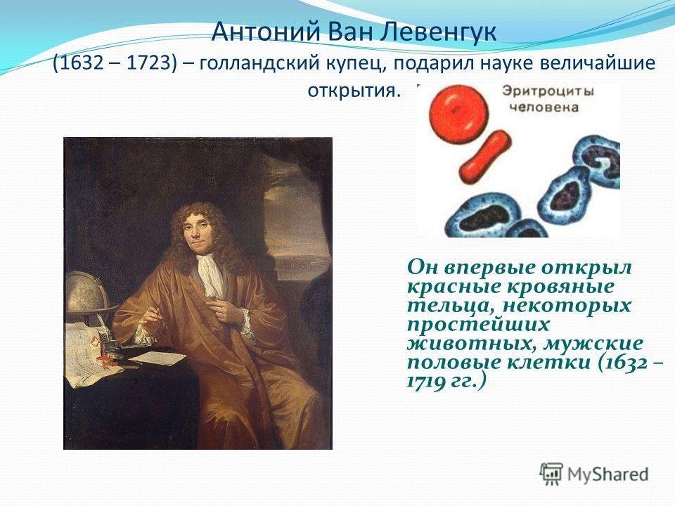 Антоний Ван Левенгук (1632 – 1723) – голландский купец, подарил науке величайшие открытия. Он впервые открыл красные кровяные тельца, некоторых простейших животных, мужские половые клетки (1632 – 1719 гг.)