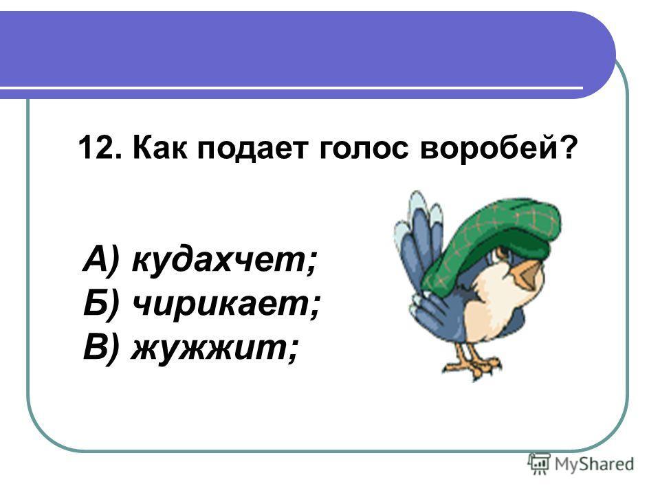 12. Как подает голос воробей? А) кудахчет; Б) чирикает; В) жужжит;
