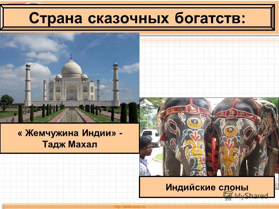 Страна сказочных богатств: « Жемчужина Индии» - Тадж Махал Индийские слоны