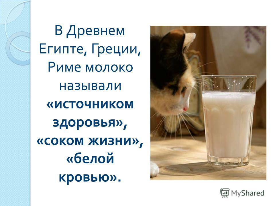 В Древнем Египте, Греции, Риме молоко называли « источником здоровья », « соком жизни », « белой кровью ».