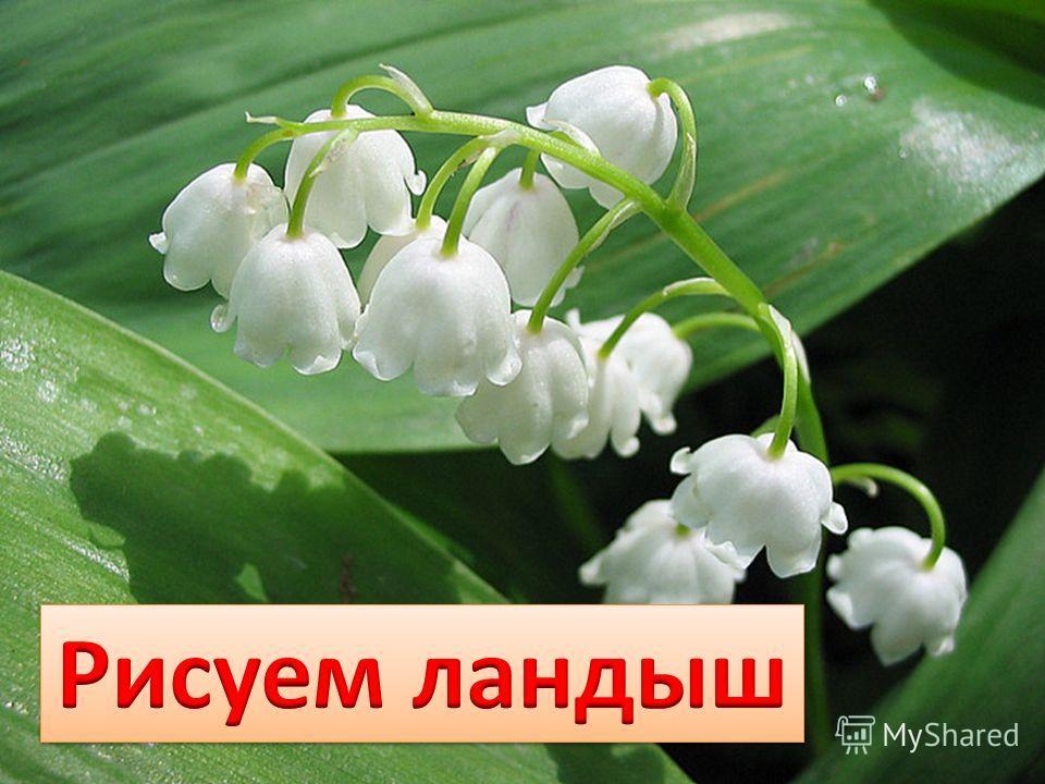 красивые белорусские платья
