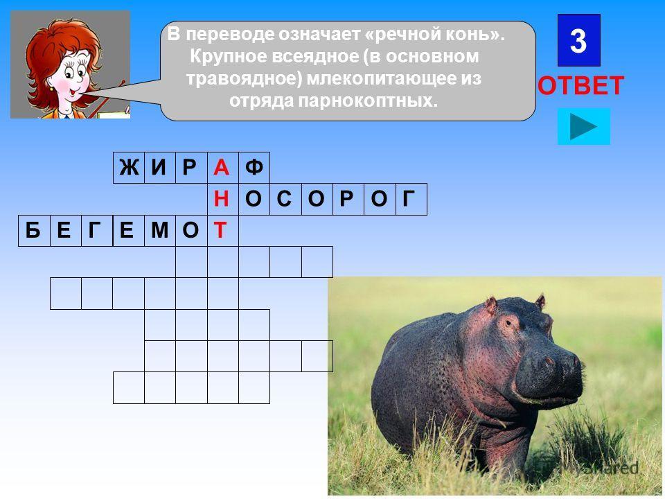 3 ОТВЕТ ЖИРФА ОНСООРГ БЕГЕМОТ В переводе означает «речной конь». Крупное всеядное (в основном травоядное) млекопитающее из отряда парнокоптных.