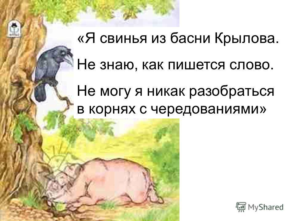 «Я свинья из басни Крылова. Не знаю, как пишется слово. Не могу я никак разобраться в корнях с чередованиями»