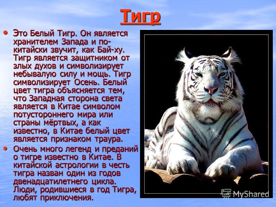ТТТТ ииии гггг рррр Э то Белый Тигр. Он является хранителем Запада и по- китайски звучит, как Бай-ху. Тигр является защитником от злых духов и символизирует небывалую силу и мощь. Тигр символизирует Осень. Белый цвет тигра объясняется тем, что Западн