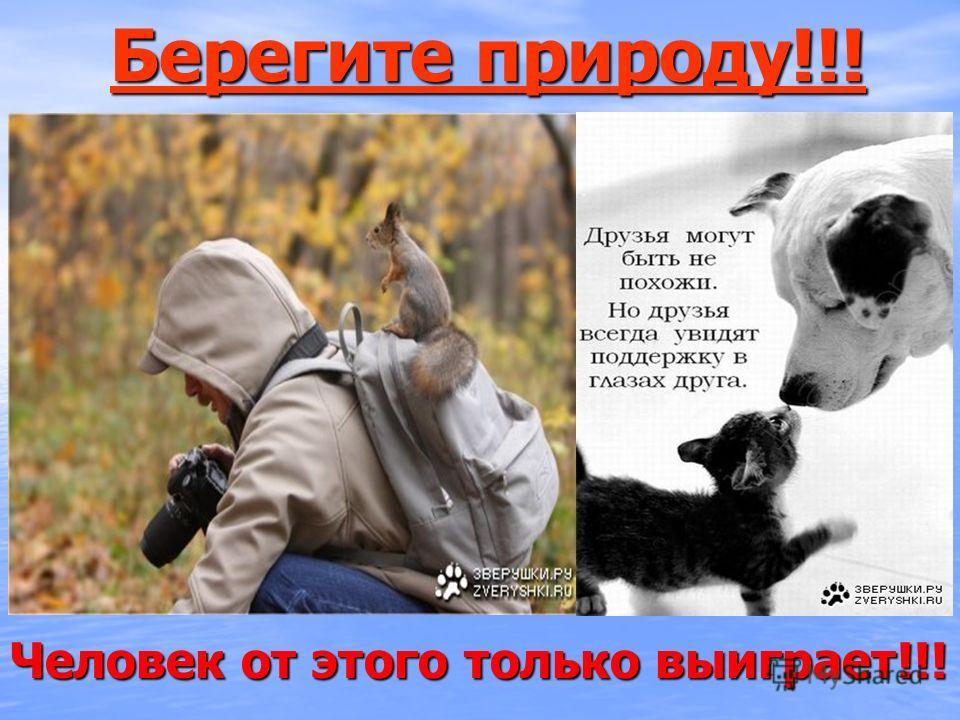 Берегите природу!!! Берегите природу!!! Человек от этого только выиграет!!!
