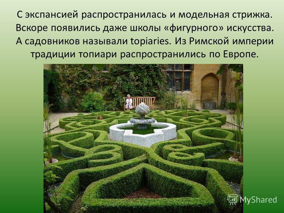 С экспансией распространилась и модельная стрижка. Вскоре появились даже школы «фигурного» искусства. А садовников называли topiaries. Из Римской империи традиции топиари распространились по Европе.