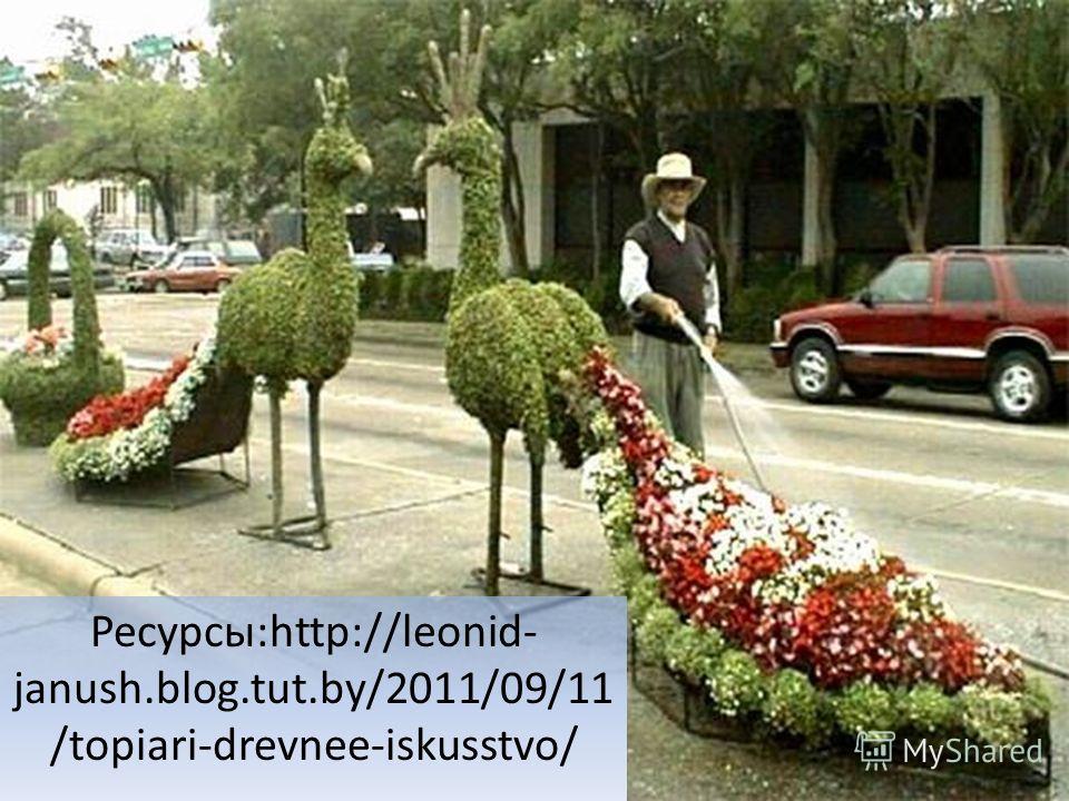 Ресурсы:http://leonid- janush.blog.tut.by/2011/09/11 /topiari-drevnee-iskusstvo/