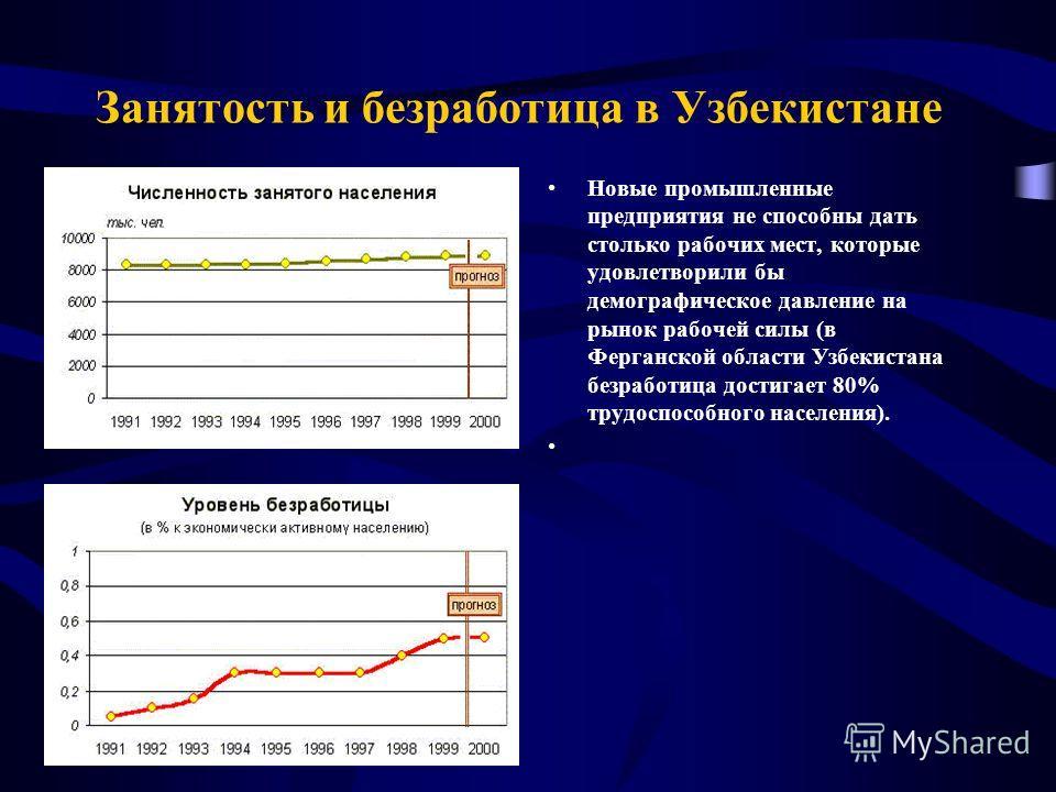 Занятость и безработица в Узбекистане Новые промышленные предприятия не способны дать столько рабочих мест, которые удовлетворили бы демографическое давление на рынок рабочей силы (в Ферганской области Узбекистана безработица достигает 80% трудоспосо