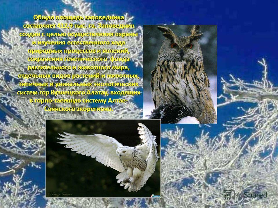 Общая площадь заповедника составляет 412,9 тыс. га. Заповедник создан с целью осуществления охраны и изучения естественного хода природных процессов и явлений, сохранения генетического фонда растительного и животного мира, отдельных видов растений и