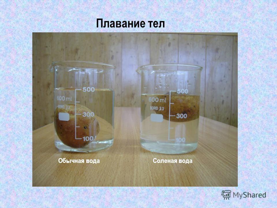 Плавание тел Обычная водаСоленая вода