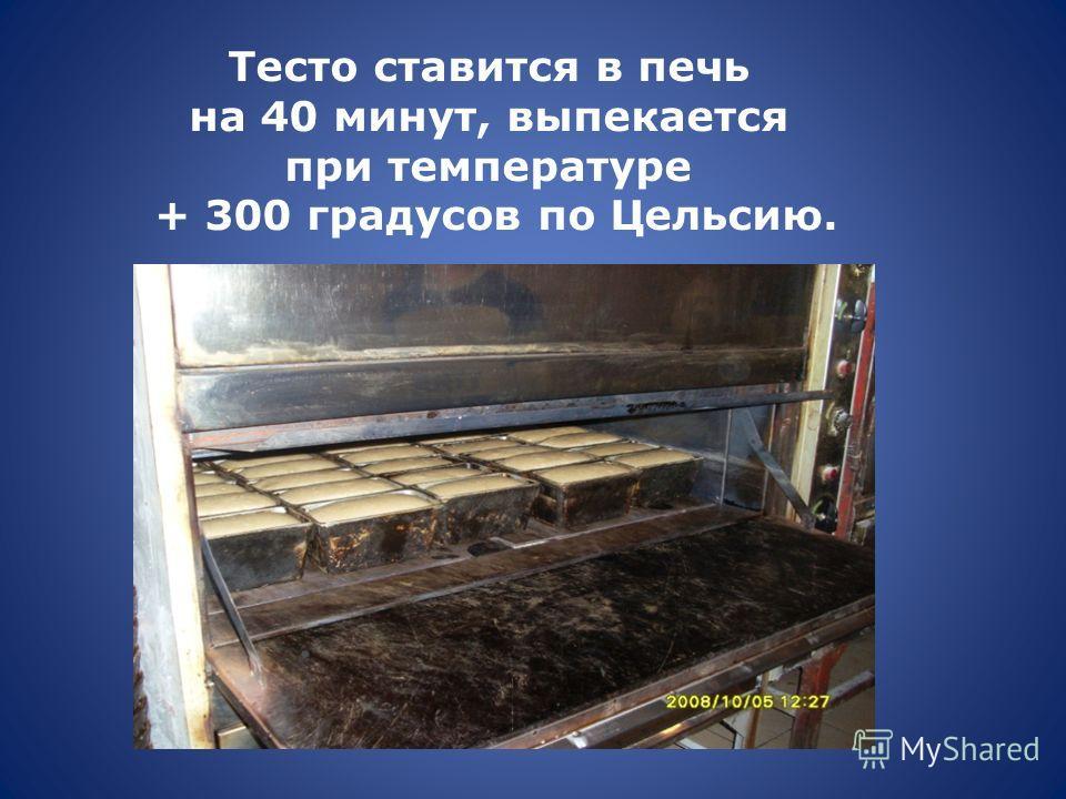 Тесто ставится в печь на 40 минут, выпекается при температуре + 300 градусов по Цельсию.