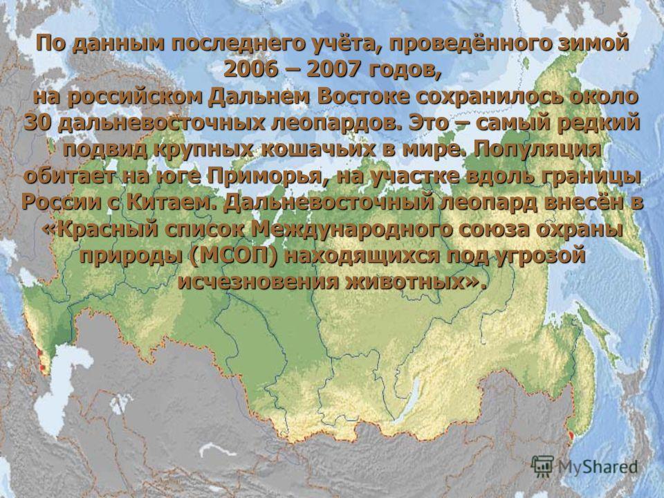 По данным последнего учёта, проведённого зимой 2006 – 2007 годов, на российском Дальнем Востоке сохранилось около 30 дальневосточных леопардов. Это – самый редкий подвид крупных кошачьих в мире. Популяция обитает на юге Приморья, на участке вдоль гра