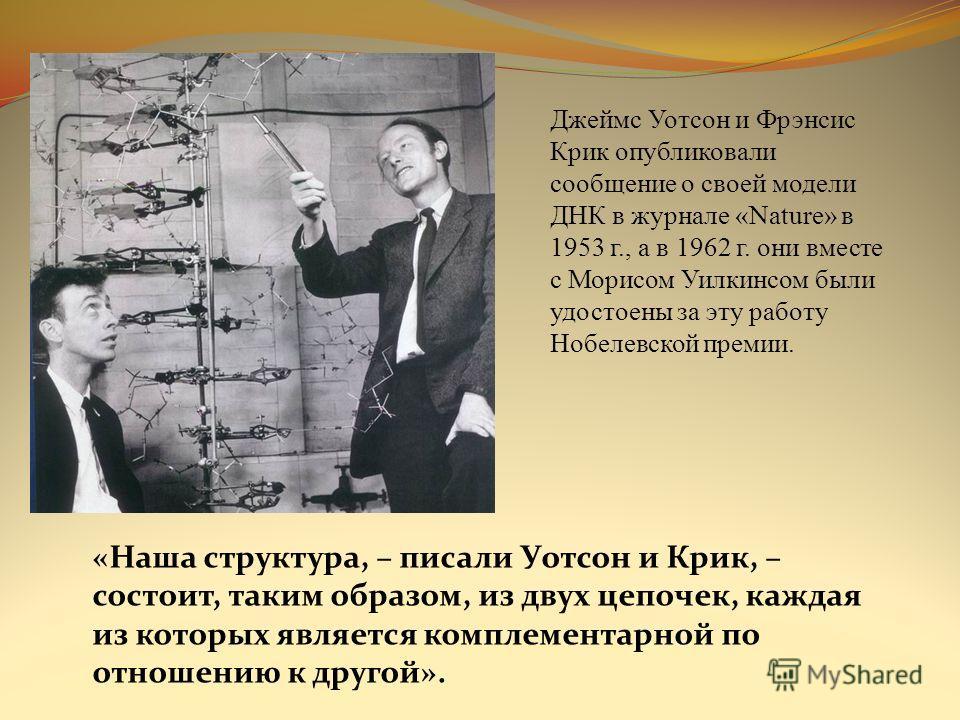 Джеймс Уотсон и Фрэнсис Крик опубликовали сообщение о своей модели ДНК в журнале «Nature» в 1953 г., а в 1962 г. они вместе с Морисом Уилкинсом были удостоены за эту работу Нобелевской премии. «Наша структура, – писали Уотсон и Крик, – состоит, таким