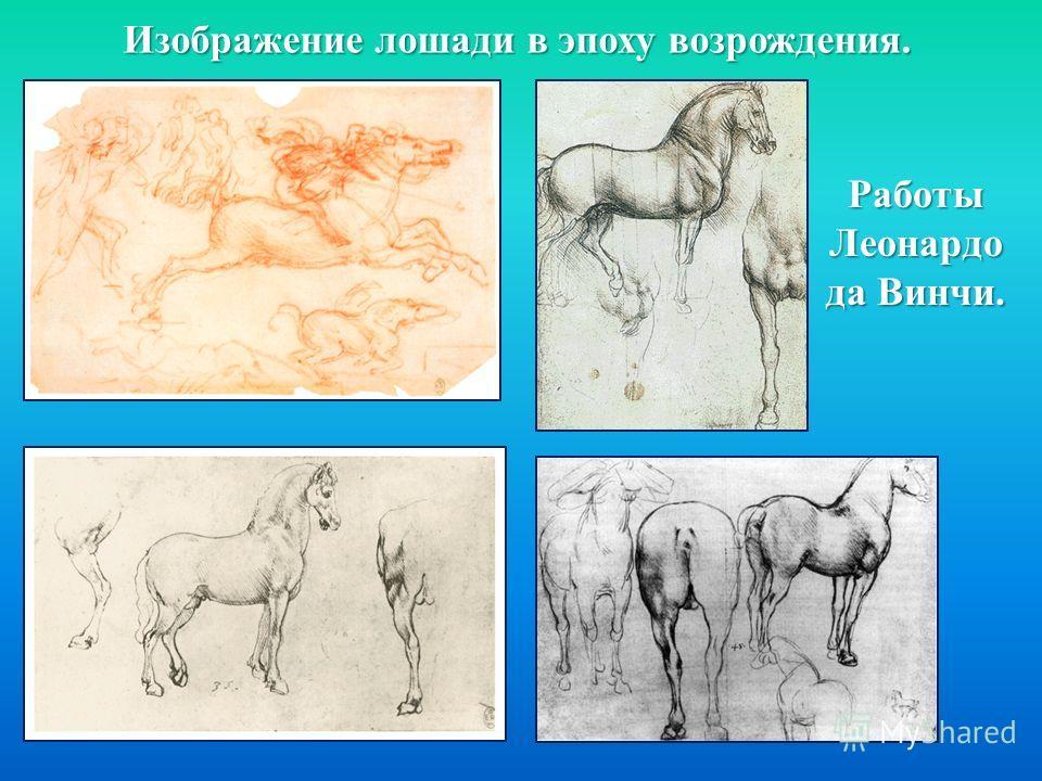 Изображение лошади в эпоху возрождения. Работы Леонардо да Винчи.