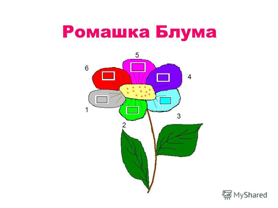 Ромашка Блума 1 2 3 4 5 6
