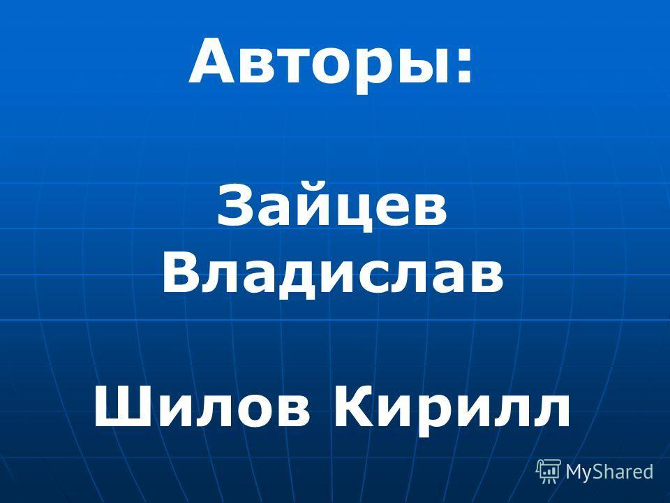 Авторы: Зайцев Владислав Шилов Кирилл