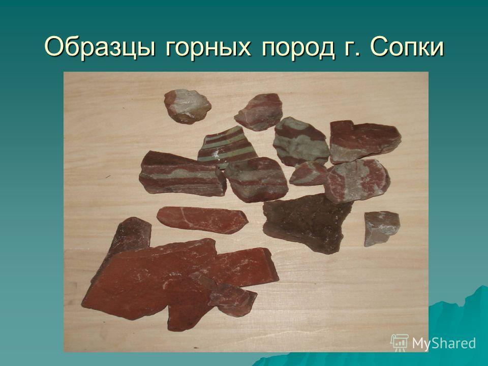 Образцы горных пород г. Сопки