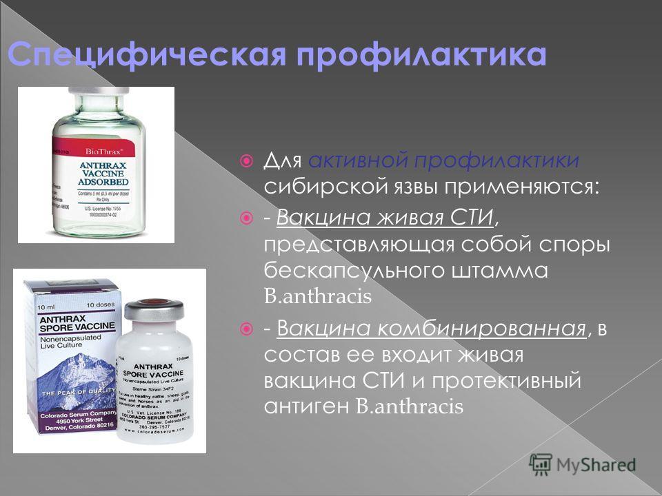 Специфическая профилактика Для активной профилактики сибирской язвы применяются: - Вакцина живая СТИ, представляющая собой споры бескапсульного штамма B.anthracis - Вакцина комбинированная, в состав ее входит живая вакцина СТИ и протективный антиген
