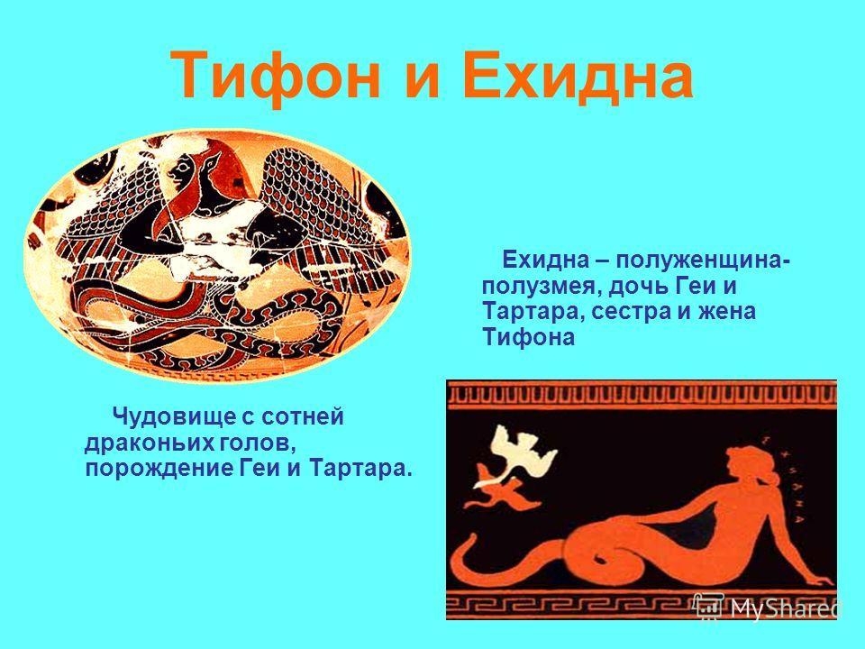 Тифон и Ехидна Чудовище с сотней драконьих голов, порождение Геи и Тартара. Ехидна – полуженщина- полузмея, дочь Геи и Тартара, сестра и жена Тифона