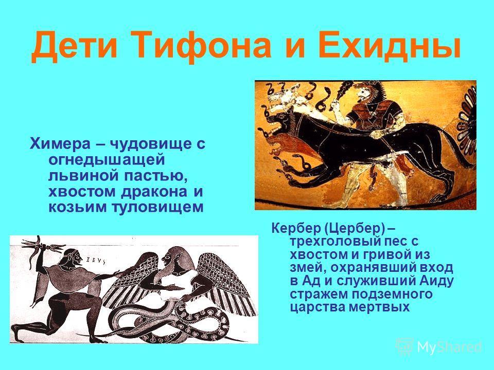 Дети Тифона и Ехидны Химера – чудовище с огнедышащей львиной пастью, хвостом дракона и козьим туловищем Кербер (Цербер) – трехголовый пес с хвостом и гривой из змей, охранявший вход в Ад и служивший Аиду стражем подземного царства мертвых
