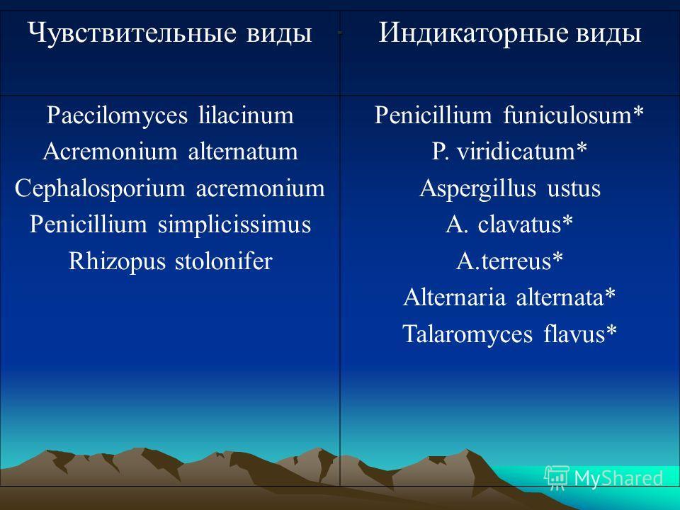 . Чувствительные видыИндикаторные виды Paecilomyces lilacinum Acremonium alternatum Cephalosporium acremonium Penicillium simplicissimus Rhizopus stolonifer Penicillium funiculosum* P. viridicatum* Aspergillus ustus A. clavatus* A.terreus* Alternaria