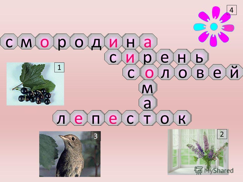 1 3 2 4 срдао-м-н 1 4 3 2 - р ьнес -йеволс о--тлпск м а ои и о ее