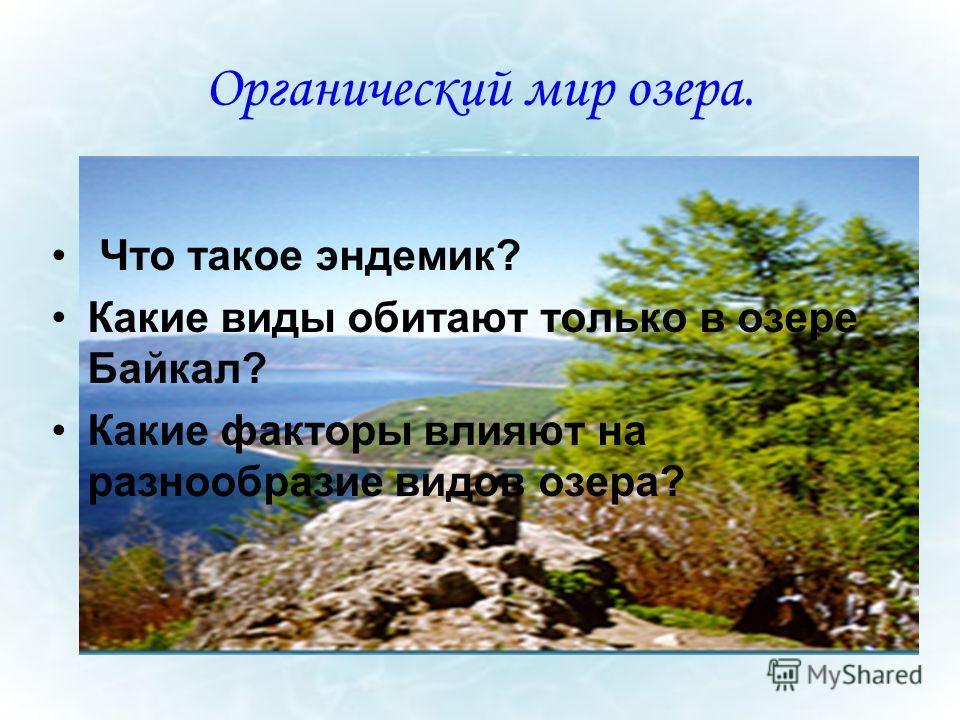 Органический мир озера. Что такое эндемик? Какие виды обитают только в озере Байкал? Какие факторы влияют на разнообразие видов озера?