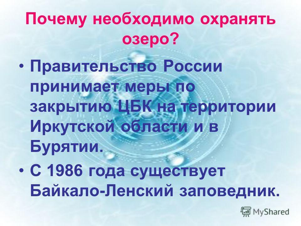 Почему необходимо охранять озеро? Правительство России принимает меры по закрытию ЦБК на территории Иркутской области и в Бурятии. С 1986 года существует Байкало-Ленский заповедник.