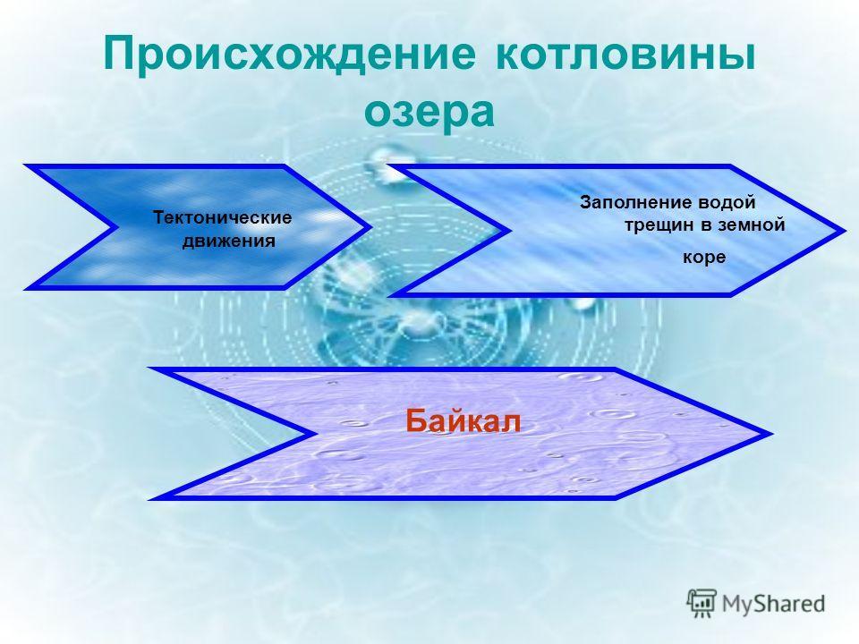 Происхождение котловины озера Тектонические движения Заполнение водой трещин в земной коре Байкал