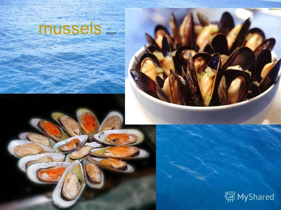 mussels мидии