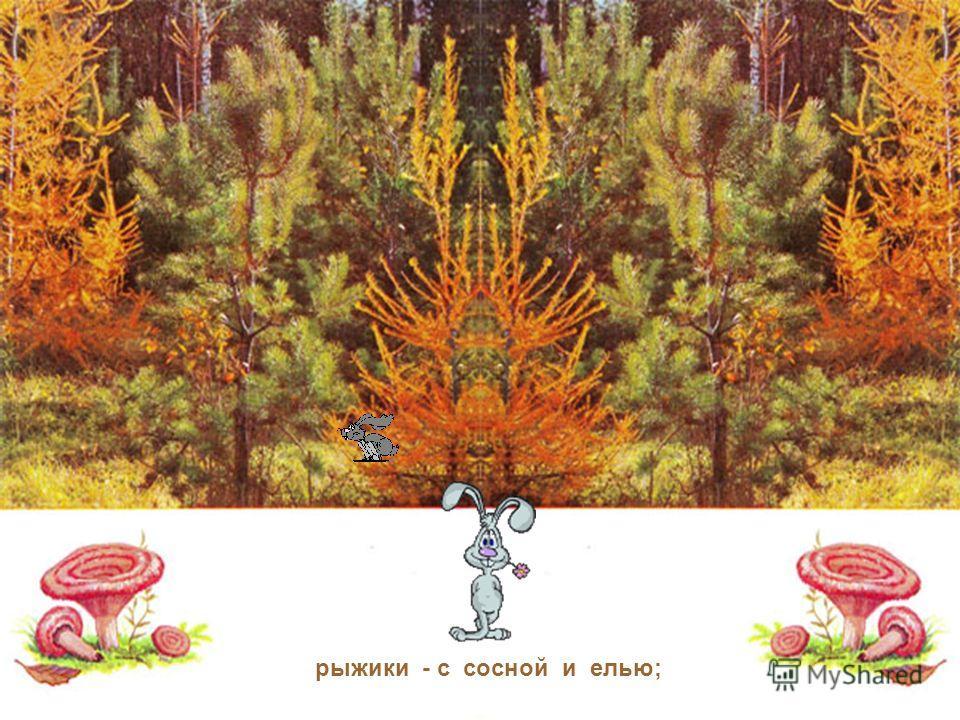 Оказывается, грибы дружат с деревьями, а деревья с грибами и жить друг без друга не могут: подберёзовики - с берёзой; подосиновики - с осиной;