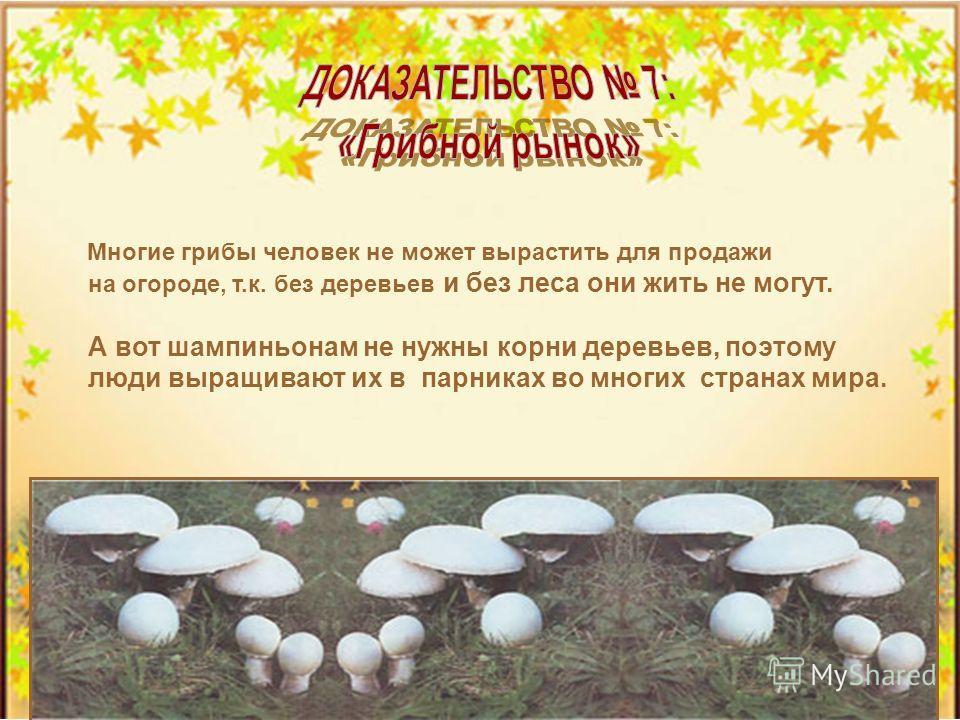 Ни одни только деревья нуждаются в грибнице. Черника и брусника без нее не растут совсем. Семена орхидеи ДАЖЕ НЕ СПОСОБНЫ ПРОРАСТИ БЕЗ ГРИБОВ.