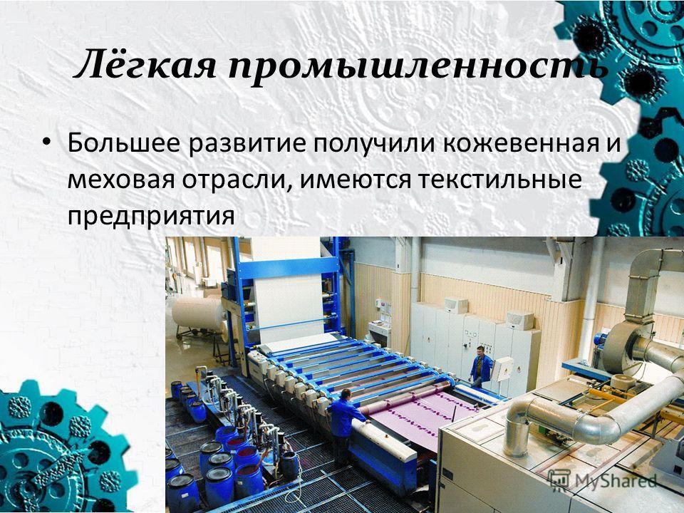 Лёгкая промышленность Большее развитие получили кожевенная и меховая отрасли, имеются текстильные предприятия