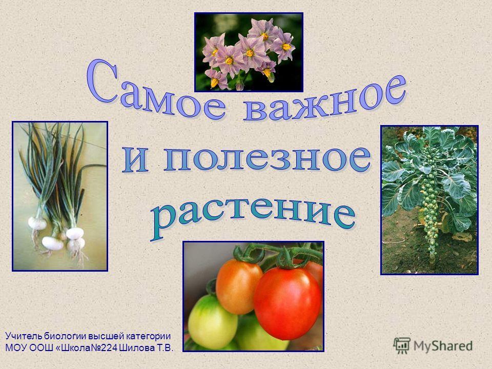 Учитель биологии высшей категории МОУ ООШ «Школа224 Шилова Т.В.