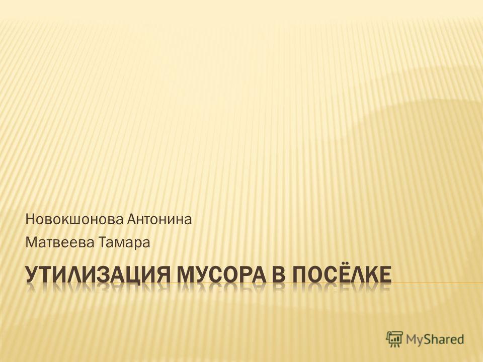 Новокшонова Антонина Матвеева Тамара