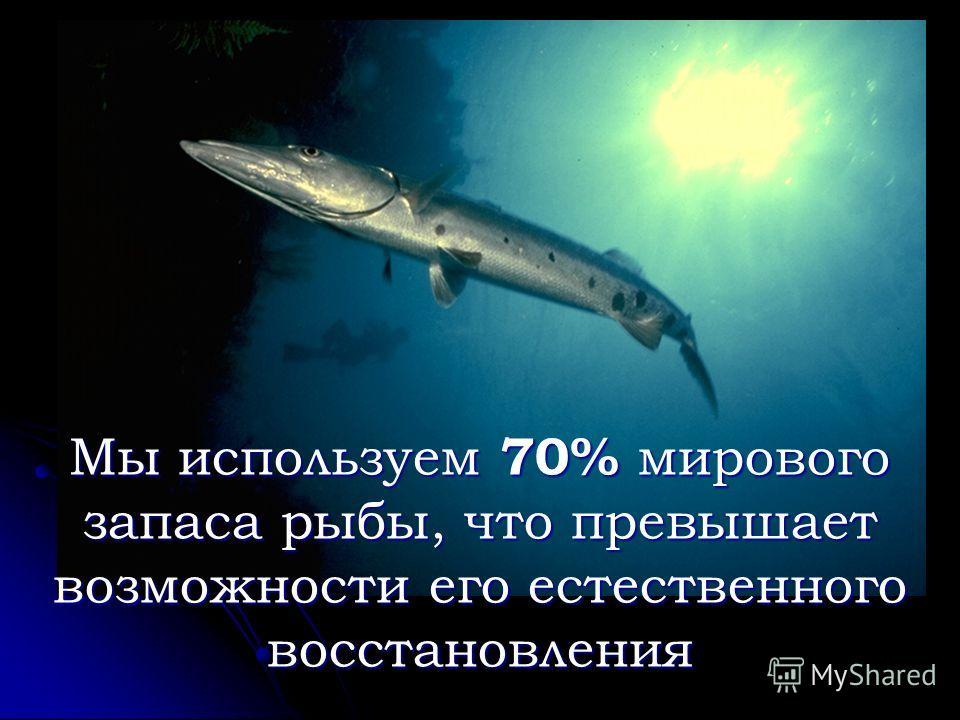 Мы используем 70% мирового запаса рыбы, что превышает возможности его естественного восстановления