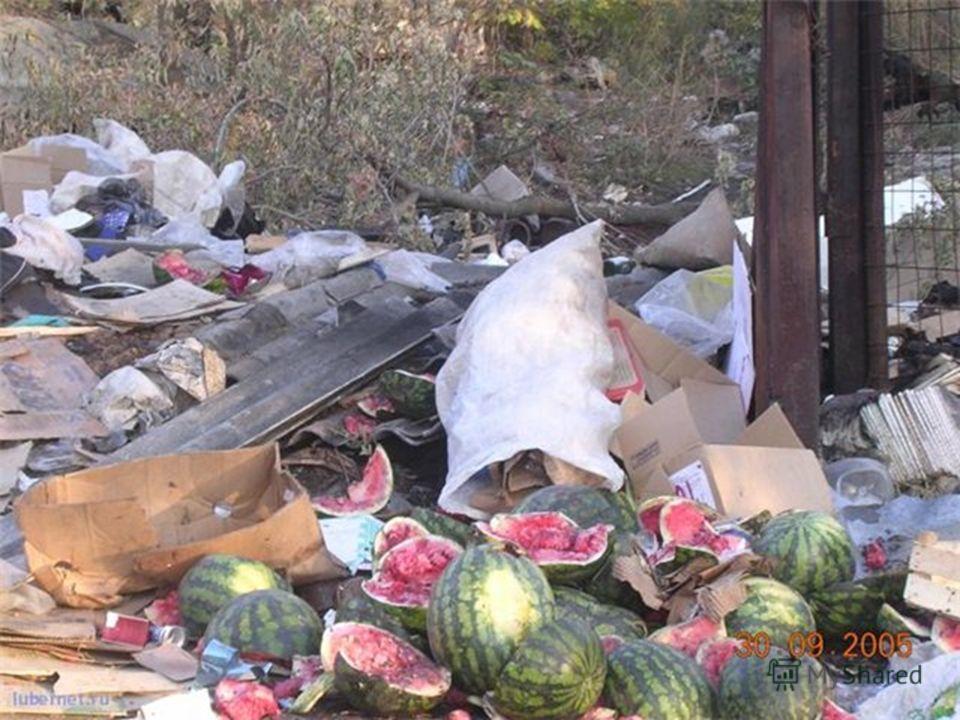 Прогресс науки и техники ведет к тому, что люди выбрасывают все больше мусора на помойку. Каждый из нас видел, что там есть: пищевые отходы, бумага, газеты, картонные коробки, старые телевизоры, обувь, почти новые куртки и пальто, двери, рамы и т.д.