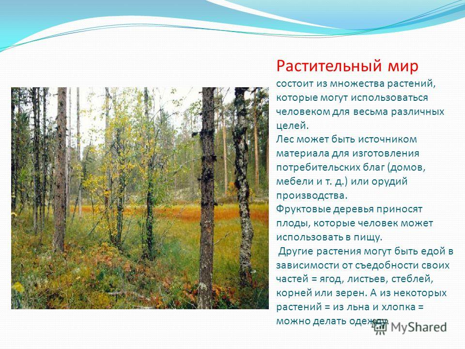 Растительный мир состоит из множества растений, которые могут использоваться человеком для весьма различных целей. Лес может быть источником материала для изготовления потребительских благ (домов, мебели и т. д.) или орудий производства. Фруктовые де