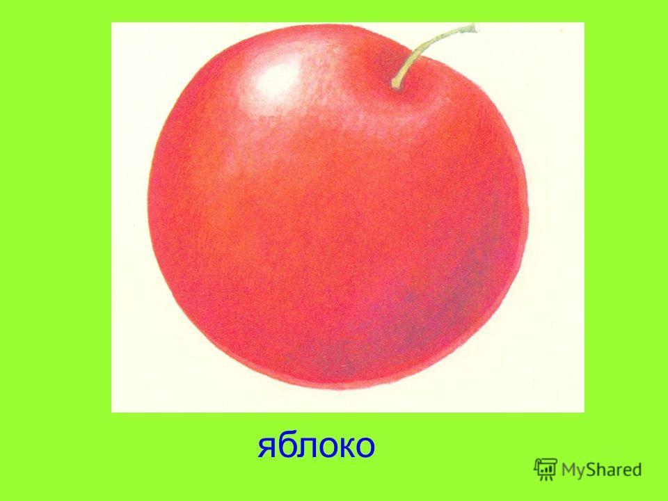 Круглое, румяное, я расту на ветке. Любят меня взрослые и маленькие детки. яблоко
