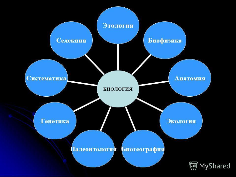 БИОЛОГИЯ ЭтологияБиофизикаАнатомияЭкологияБиогеографияПалеонтологияГенетикаСистематикаСелекция