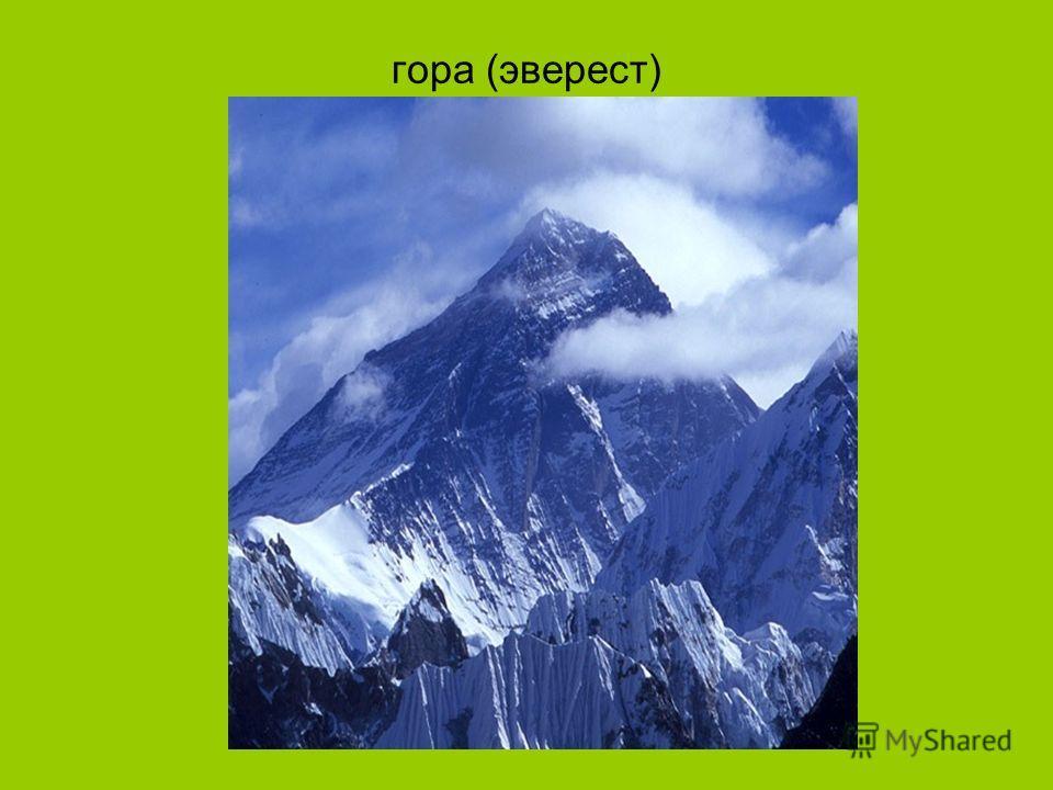 гора (эверест)